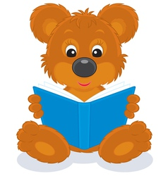 Bear cub reading a book vector