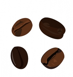 Coffee bean vector