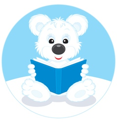 Polar bear cub reading a book vector