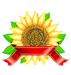 Label design with sunflower leafs and red ribbon vector