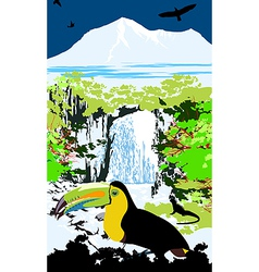 Variegated tucanucu parrot on the waterfall and ju vector