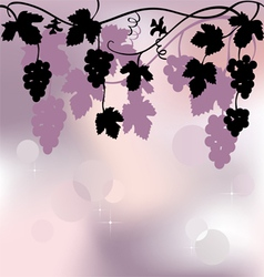 Plant background with grapes vector