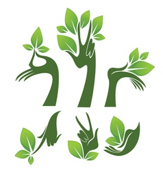 Green hands eco and beauty symbols vector