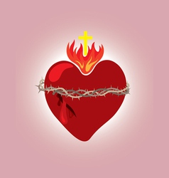 Secret heart christian icon and symbol vector