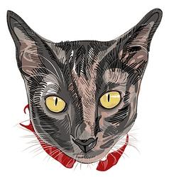 Hand drawn kitty face vector