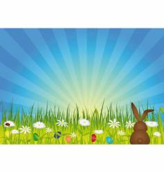 Easter bunny on green meadow vector