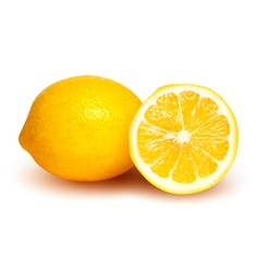 Fresh lemon and lemon slice vector