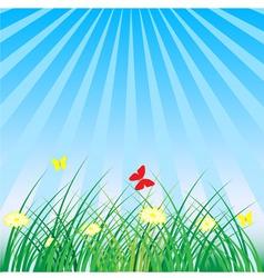 Summer spring nature background grass butterflies vector