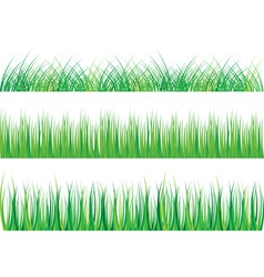 Collection of green grass isolated on white vector