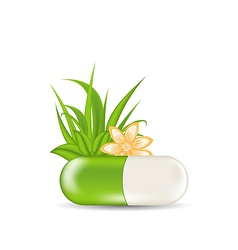 Natural medical pill with flower leaves grass vector