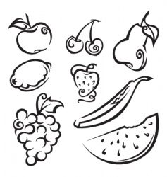 Fruit and berries vector
