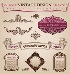 Calligraphic elements vintage vector