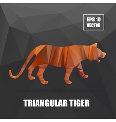 Poly design tiger  tiger vector