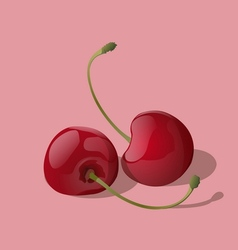 Ripe red cherry berries vector