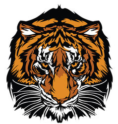 Tiger head graphic mascot vector