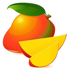 Icon of ripe exotic mango with two slices vector