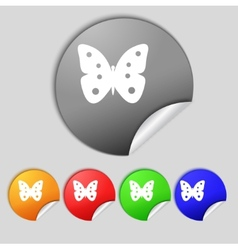 Butterfly sign icon insect symbol set colourful vector