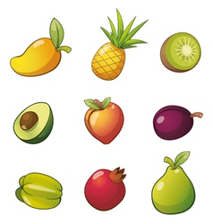 Fruitset vector