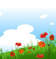 Summer grassy field and poppies flowers background vector