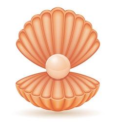 Shell 03 vector