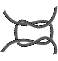 Rope loop3 vector