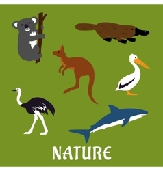 Australian animals and birds flat icons vector