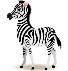 Zebra cartoon vector