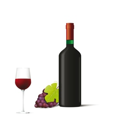 Red vine bottle with glass and grapes vector