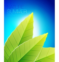 Green nature leaf background vector