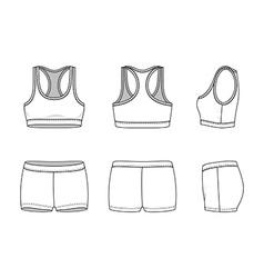 Sports suit vector