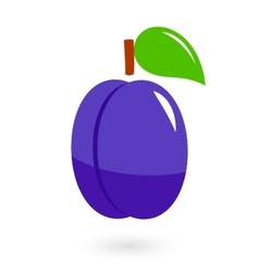 Fruit icon with isolated plum vector