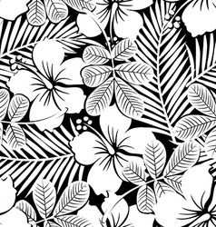 Black and white tropical hibiscus flowers and vector