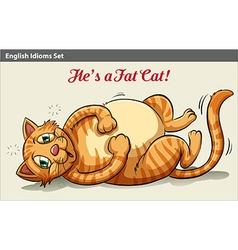 A fat cat vector
