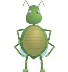 Green insect tom vector