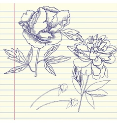 Notebook set with peonies vector