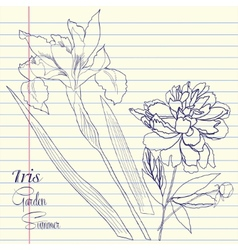 Notebook set with peony and one iris vector