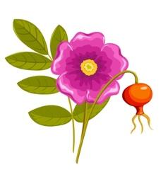 Cartoon flowers vector