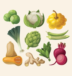 Set of exotic vegetables vector