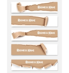 Set of torn paper banners vector