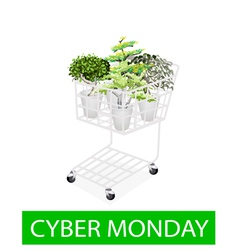 Green trees in cyber monday shopping cart vector
