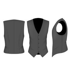 Men waistcoat for business men vector