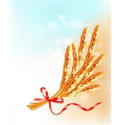 Ears of wheat with red ribbon vector