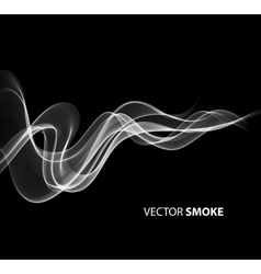 Realistic smoke on black background vector