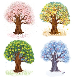 Four seasons vector