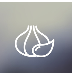Garlic thin line icon vector