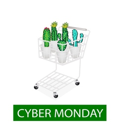 Cactus and cactus flowers in cyber monday shopping vector