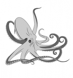 Octopus tattoo vector