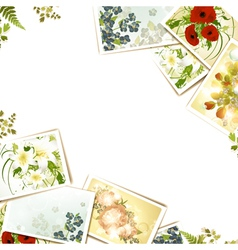 Some flower photos vector