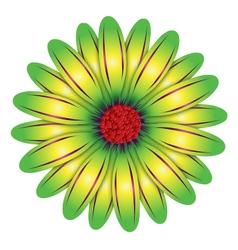 Green flower vector