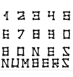 Bones numbers white vector